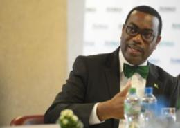 Adesina: 'AfDB stands fully ready to work with African leaders to achieve development goals'