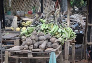Yam and Banana in the market in Côte dIvoire 1